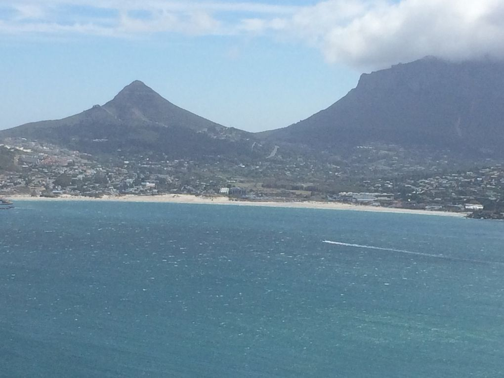 We love Cape Town !