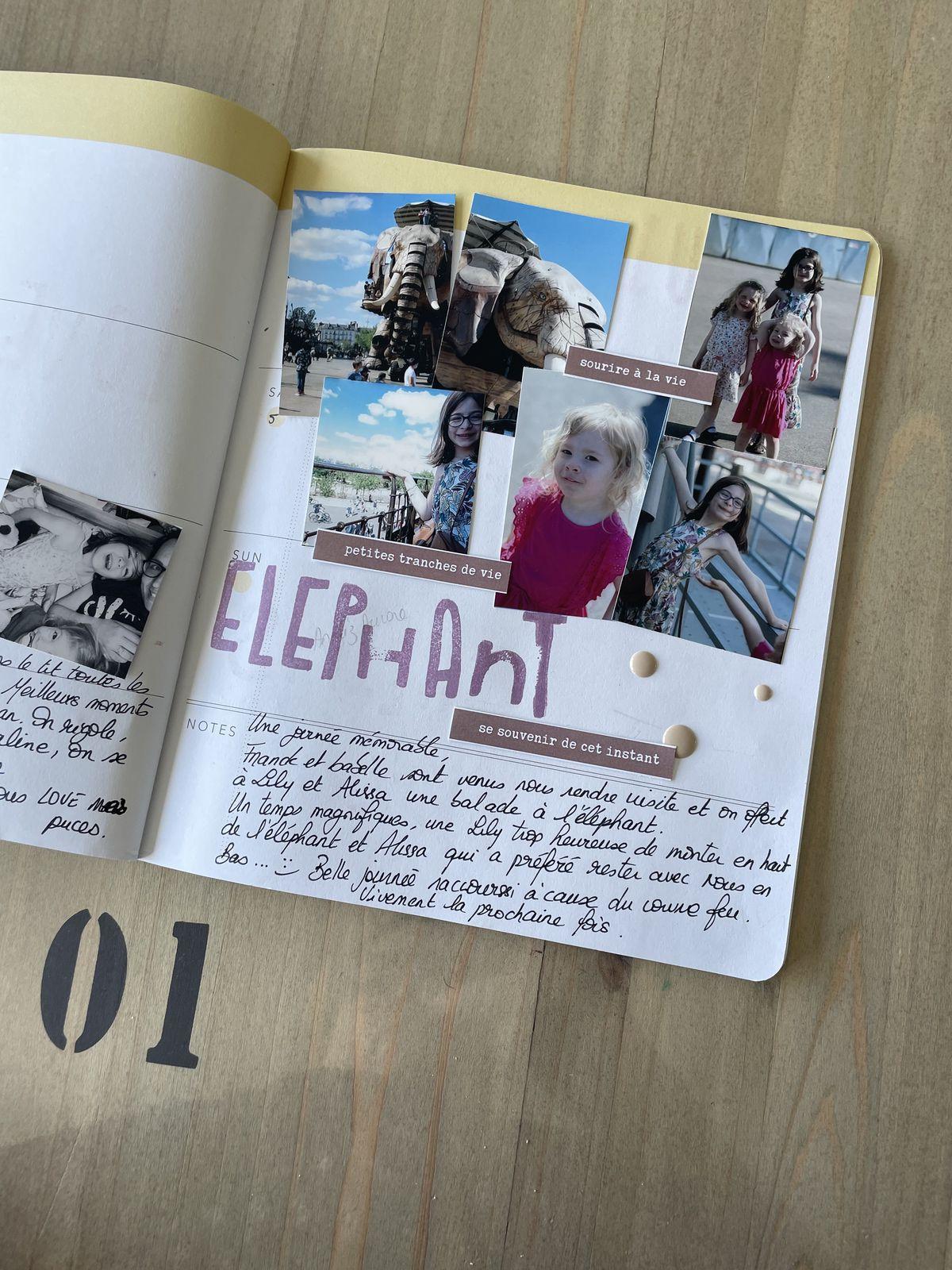 Marilyne ; project Life et carnet heidi  swapp
