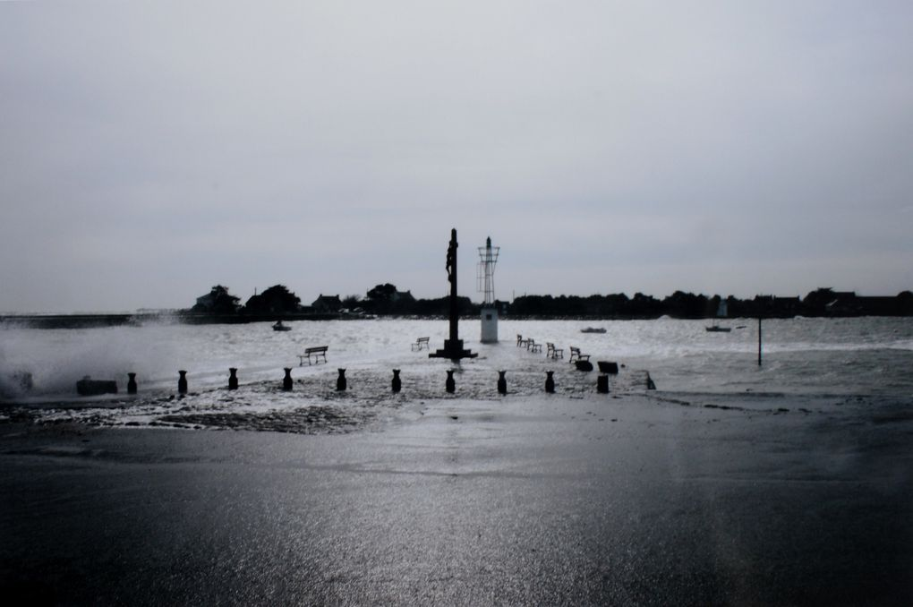 Album - PHOTOS-DU-CONCOURS-2011