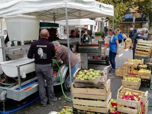 Castellane  : journée de pressage de fruits