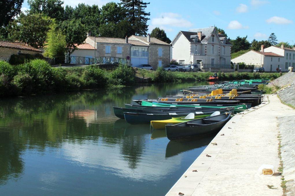 3 - Une journée à Coulon
