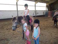 Stage Initiation à l'équitation (25-29 juillet)
