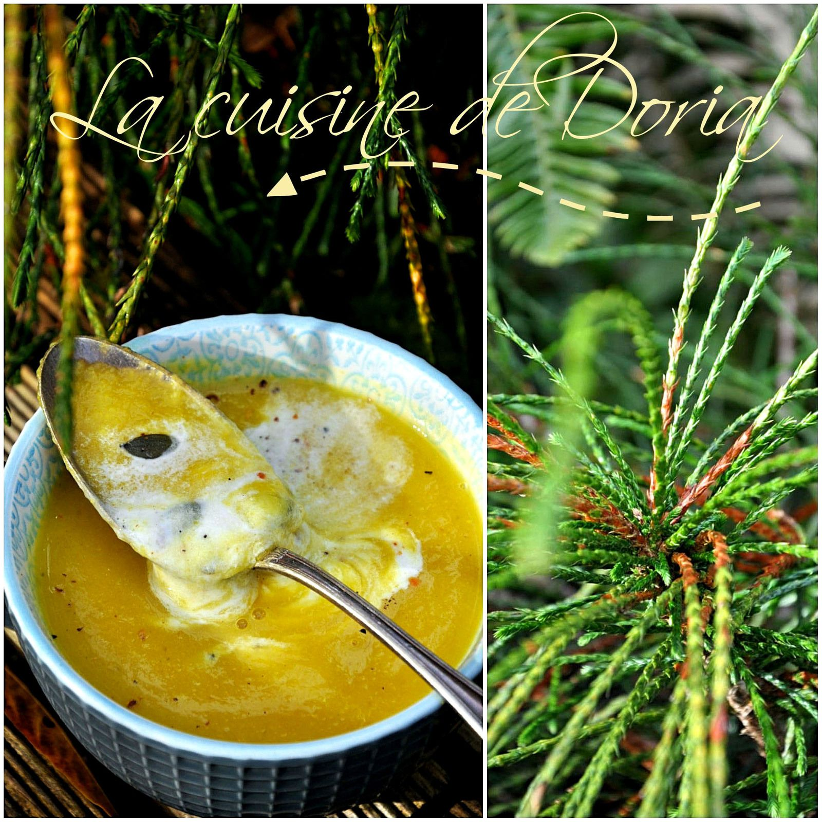 Velouté de panais, courgettes et navets à la crème de coco