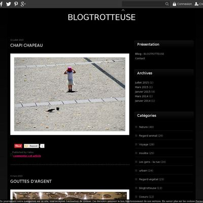 BLOGTROTTEUSE