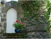Portes fleuries à Salers