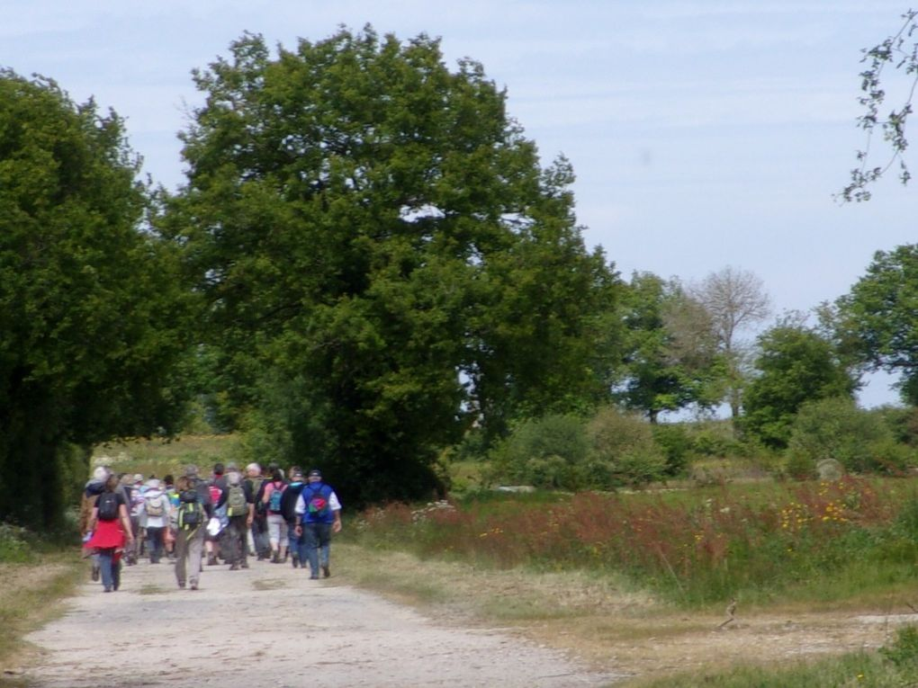 """Les """"12 Km"""" à La Boissière"""