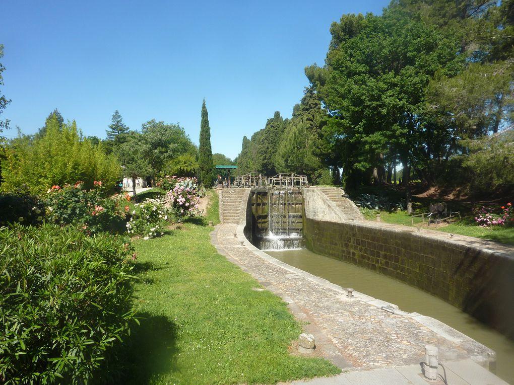 De Montcuq dans le Lot (vous connaissez tous l'arrêt de Montcuq !!!) à Puget en passant par le chemin bordant le canal du midi et les petits sentiers de Camargue.GRANDIOSE !! que la France est belle!!
