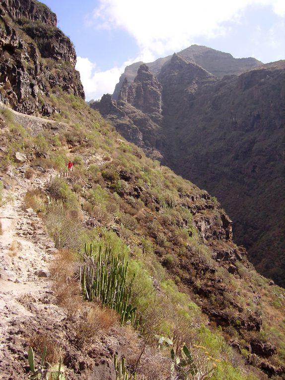 Le Massif du Teno, au nord-ouest de Ténérife, caractérisé par ses immenses gorges et falaises verticales, riche en balades et randonnées, dont une des plus belles est celle des gorges de Masca.