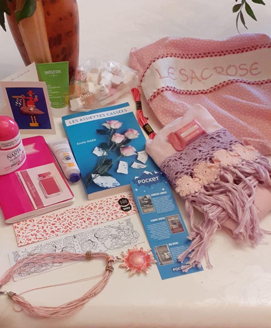 N°293 Le sac rose : 19ème voyage