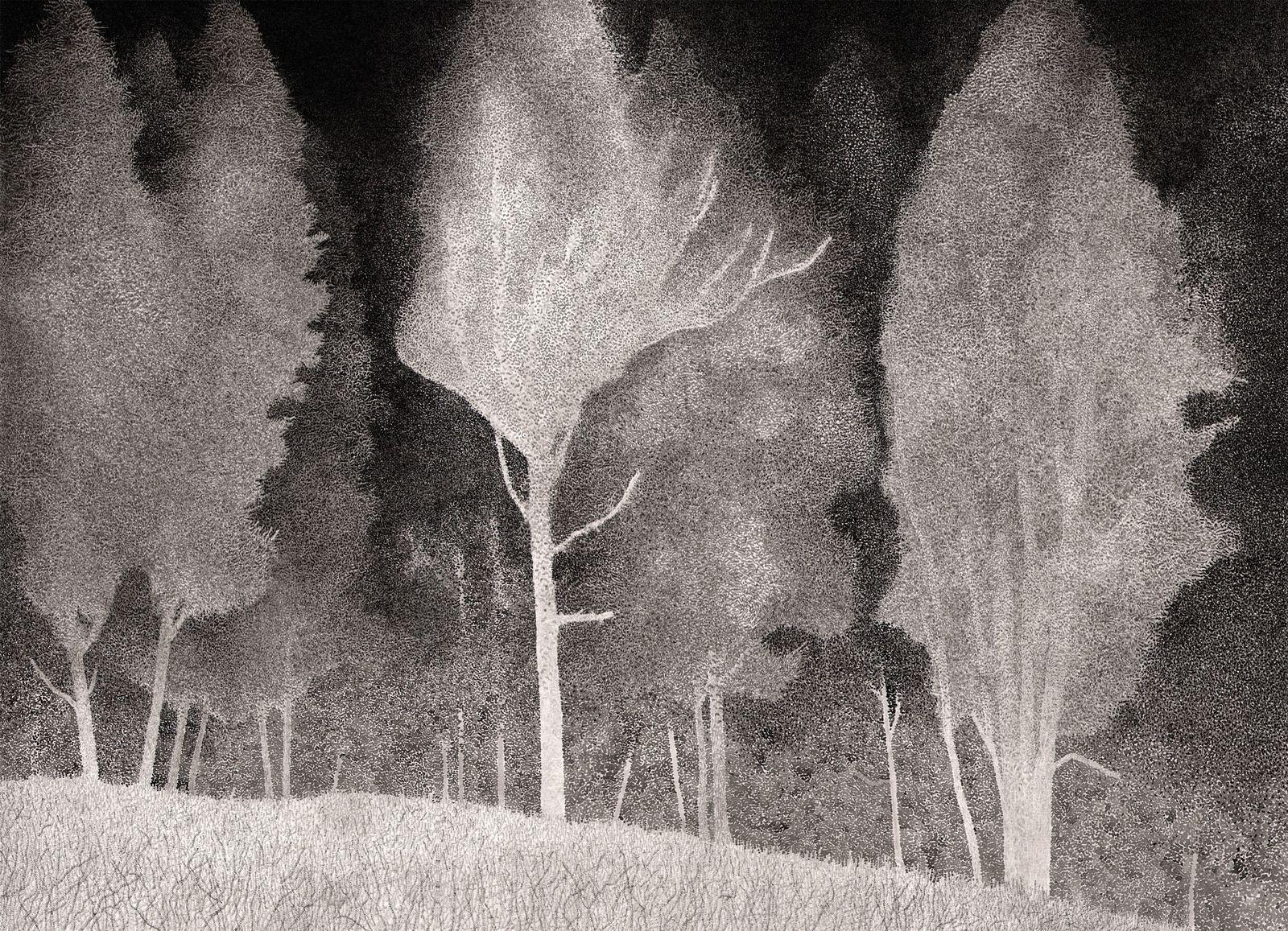 Un chant de rayons grandit la nuit et conjure un empire de poussières, 75 x 55cm, 2019