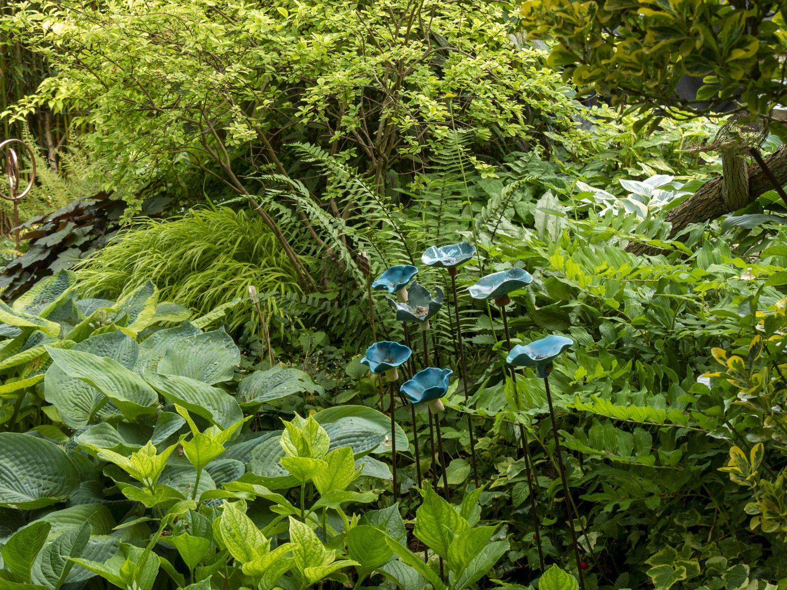 De jardin en jardin en Alsace et dans les Vosges