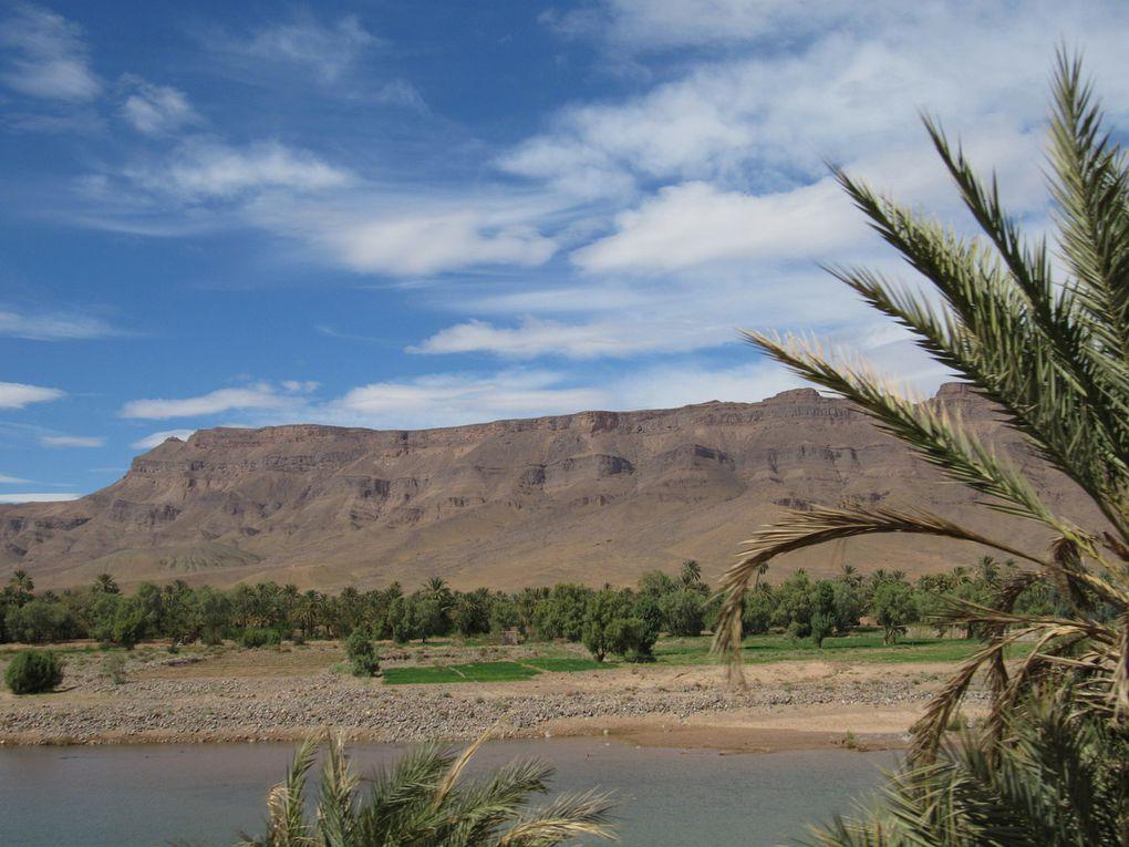 Excursions Dromadaires et 4x4 départ Marrakech & Ouarzazate