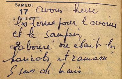 Samedi 17 septembre 1960 - herser les terres de l'avoine