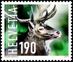 Le cerf