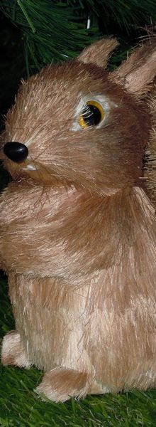 L'écureuil au rayon de Noël de Chris...