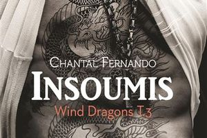 Wind Dragons tome 3 : Insoumis de Chantal FERNANDO