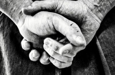 Métier, vie, famille et Aïkido