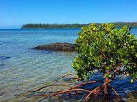 Kanua Tera Ecolodge ~ Port Boisé ~ Nouvelle Calédonie