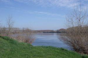 Les CM1 Azur au bord de l'eau...