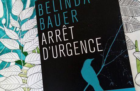 MasseCritique : Arrêt d'urgence de Belinda BAUER (Ed. Belfond)
