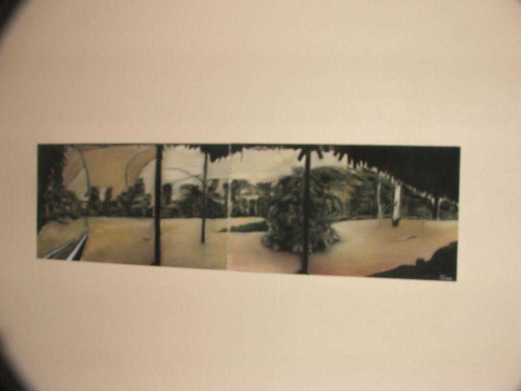 Pastels secs sur toiles de grands formats en général, le plus souvent figuratifs exécutés ente 2007 et 2009...