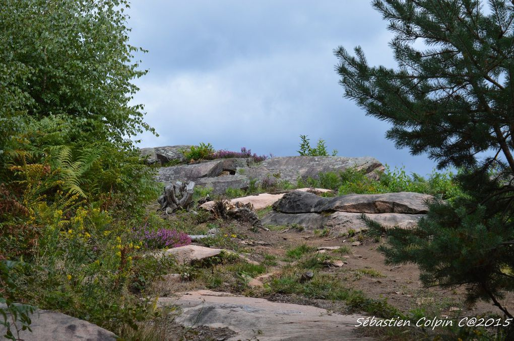 Aubazine(19), le sentier du dolmen au cromlech