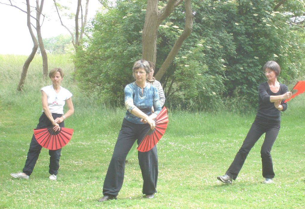 Chaque deuxième samedi du mois du juin, les associations de la région caennaises (Association de taiji de Caen, Le Bambou et Yang en Yin se réunissent pour une pratique en commun autour du yangjia michuan taiji quan. Cette année le programme se d