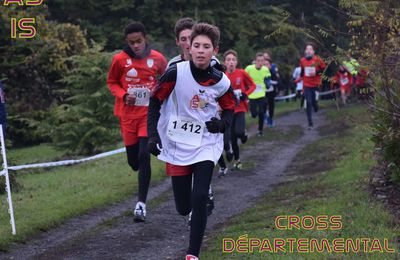 CHAMPIONNAT DEPARTEMENTAL CROSS COUNTRY 2018/2019