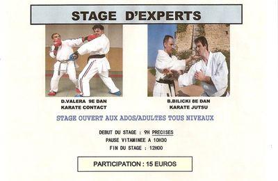 Stage du 10/10/09 à Miribel (01)