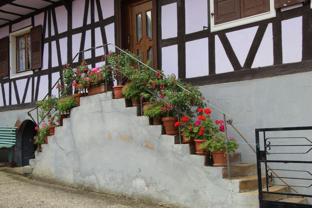 "Dieffenbach-les-Woerth, village ""gaulois"" fleuriPro"
