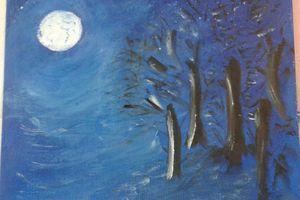 Pleine Lune 30 novembre 2020