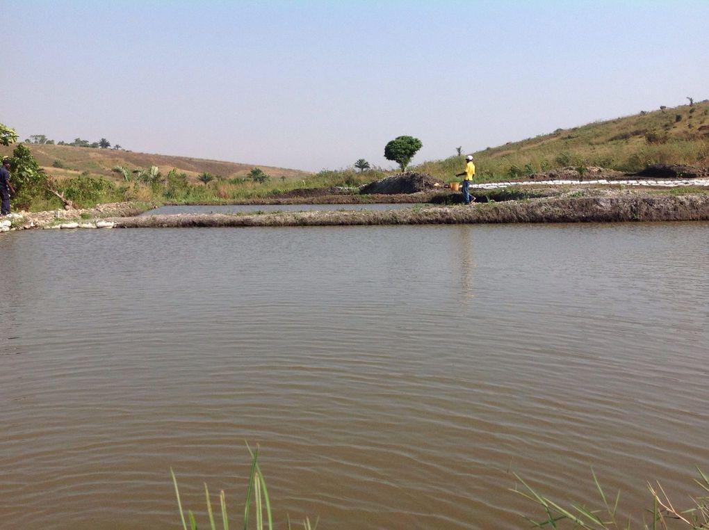 As imagens da visita da Ministra das Pescas na Damba