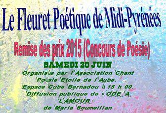 Fête de la musique à Villemur sur Tarn