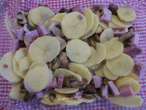 Gratin de pommes de terre,  jambon et champignons et Cantal