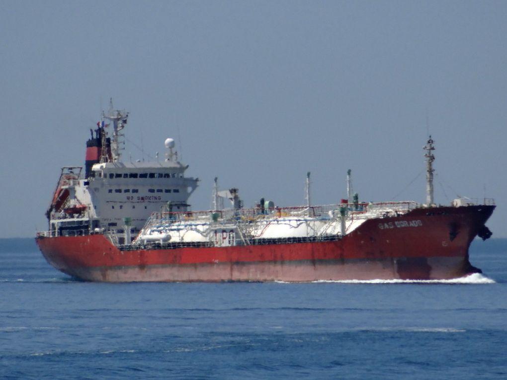 GAS DORADO , entrant dans le port de Lavera le 24 juin 2015