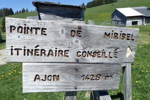 Pointe de Miribel : Depuis les Granges de Plaine Joux 2/2