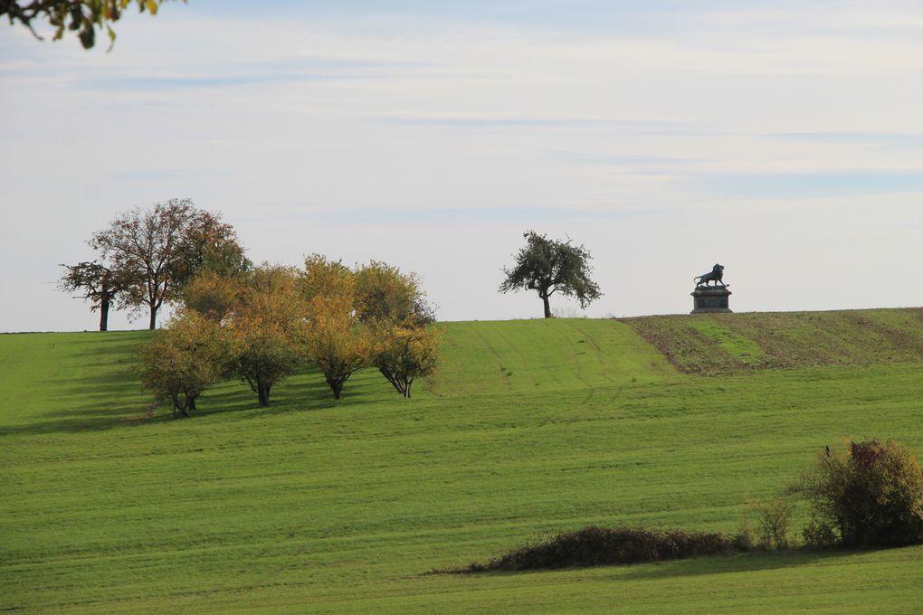 Circuit du champ de bataille de Woerth-Froeschwiller