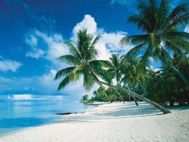 C'est à Magellan (1480-1521) que l'océan Pacifique, le plus vaste de la planète, doit son nom.