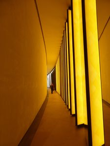 Olafur Eliasson, l'homme qui joue de la lumière et de nos sens / FIAC 2014 & Fondation Louis Vuitton / Paris