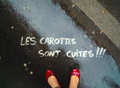 Le blog de carbottine