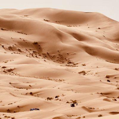 Rallye Aicha des gazelles voiture média