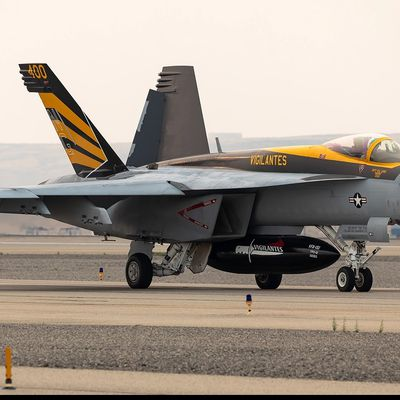 "Boeing F/A-18E Super Hornet ""Rhino"" - Strike Fighter Squadron One Five One (VFA-151) ""The Vigilantes"" - CAG 2020"