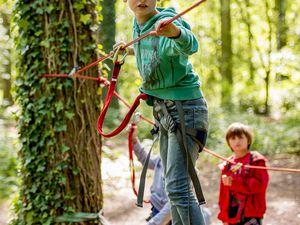 Stage Multi Activités Nature - grimpe à l'arbre - 05 Aout