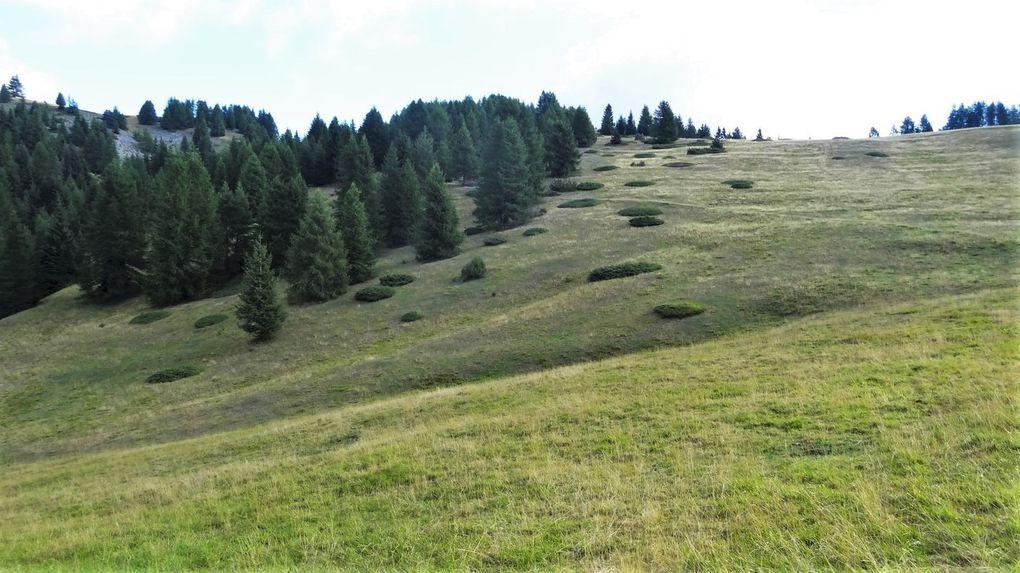 Tour du Mont Brussière
