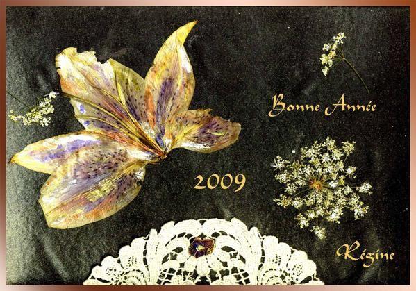 Album - Voeux carte postales