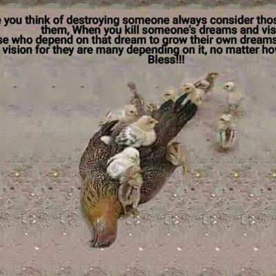 Before you think of destroying someone always consider those who depend on them, When you kill someone's dreams and vision it's those who depend on that dream to grow their own dreams. Please don't hurt anyone's vision for they are many depending on it, no matter how small it looks God Bless!!!