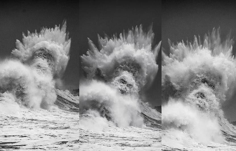 couverture france3-regions.francetvinfo.fr La photo « coup de chance » du photographe Mathieu Rivrin mérite un double grand merci – pour lui et le… coup de bol !...ici img.20mn.fr