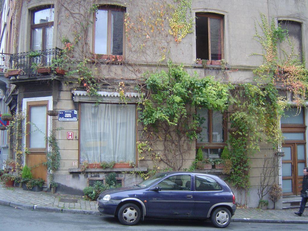 Album - Mini-Jardins-de-rue