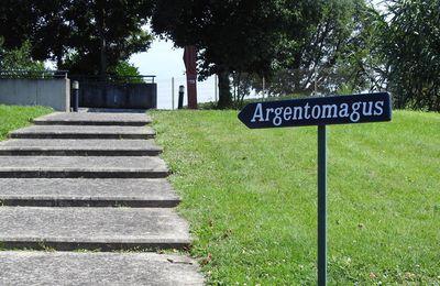 Argentomagus - le site
