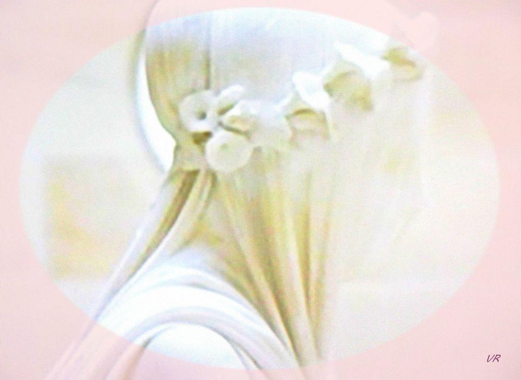 Sculpture grâce,  Cathédrale de Coutances, Pensées Alice, Rose Alice. @Véronique Romance 2021.